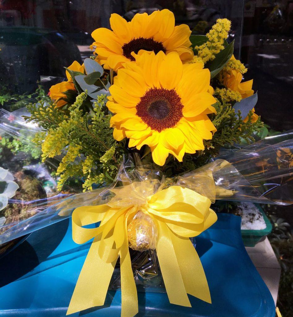 significado das flores girassol