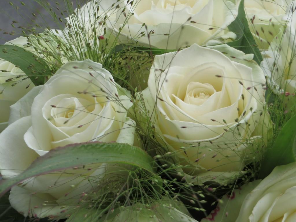 flores para eventos rosas
