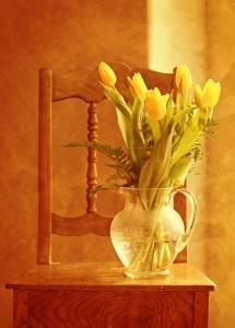 tulip-bouquet-1715054_1920