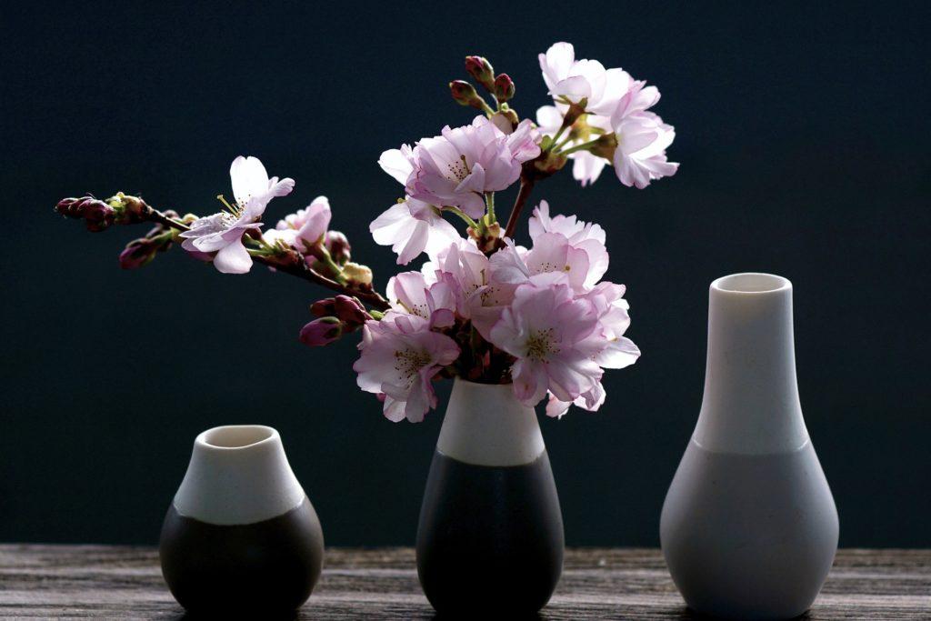 iluminação ideal flores