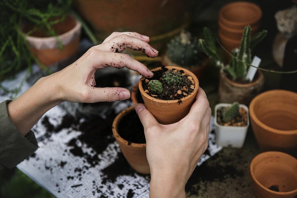 vasos para arranjos de flores vasos pequenos