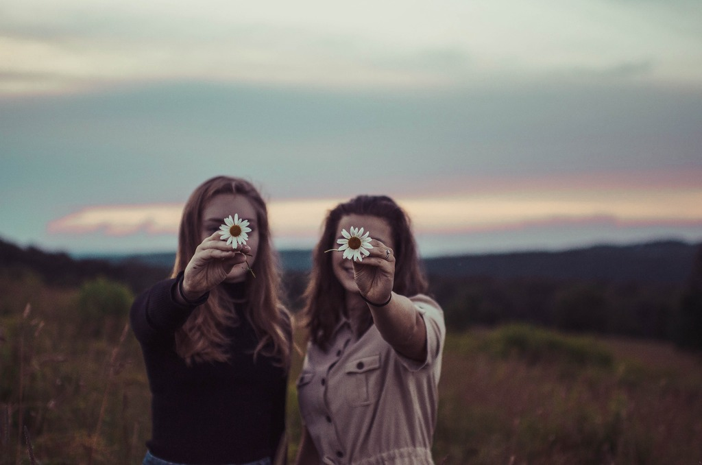 flores e amizade
