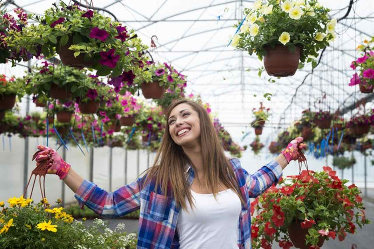 Flores e felicidade