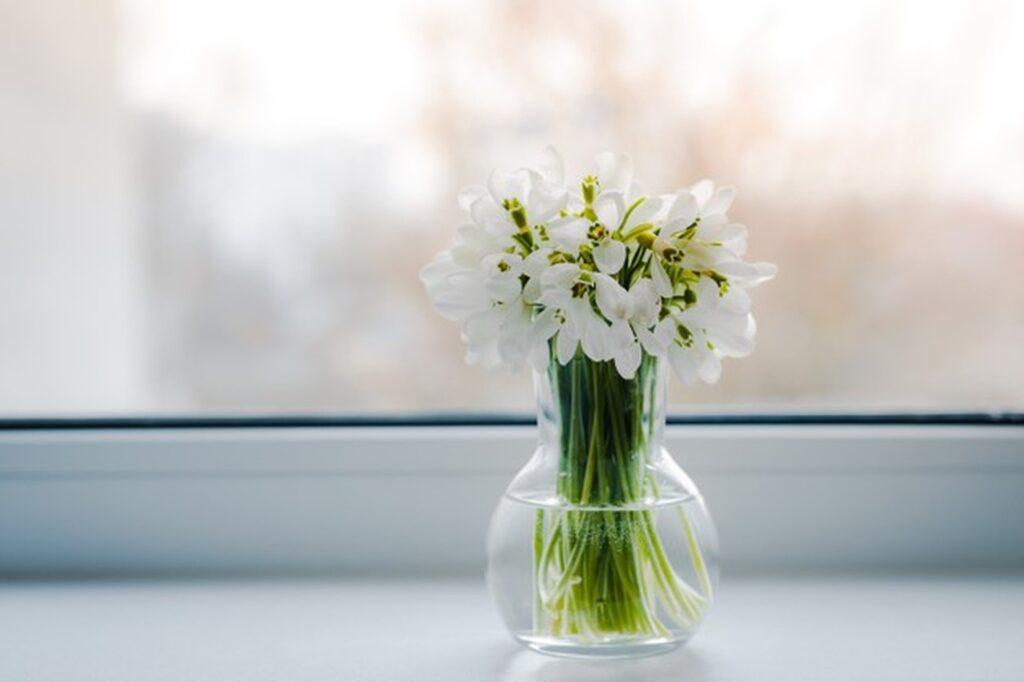 vaso com água
