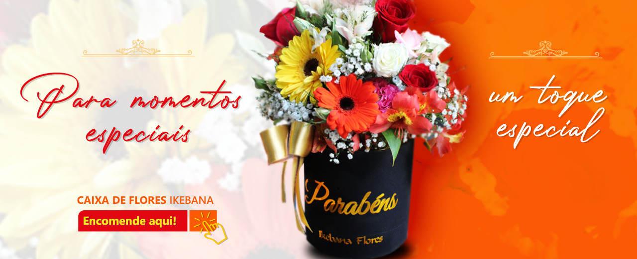 Floricultura de Belo Horizonte-MG