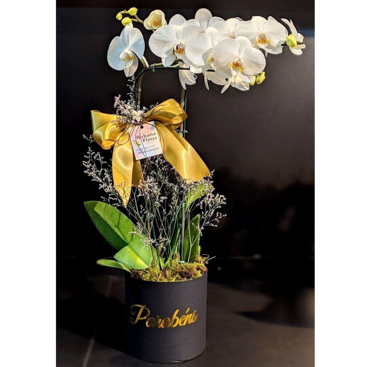 """Orquidea Box """"Parabéns"""""""