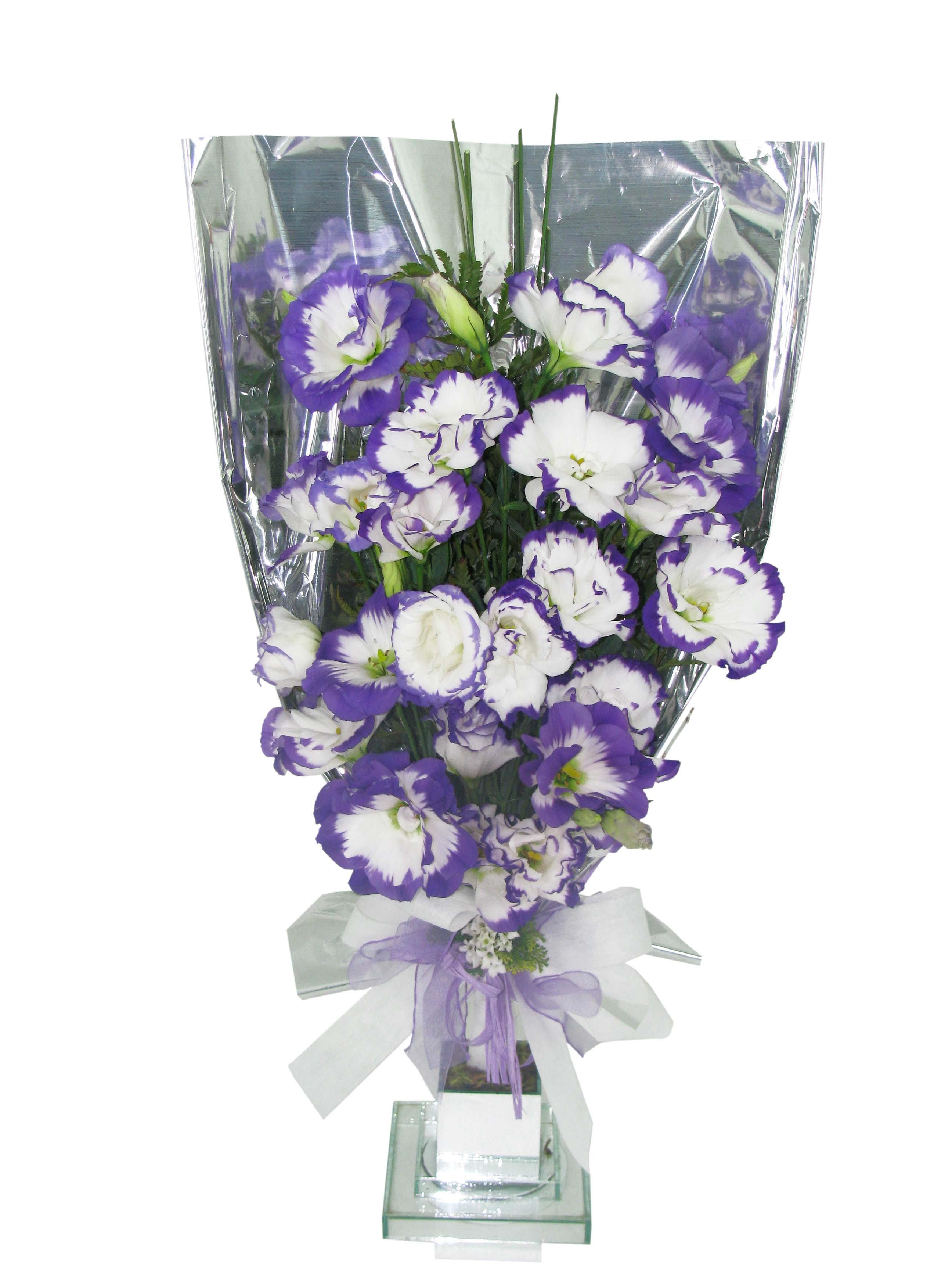 Bouquet leque de liziantus bicolor - BH