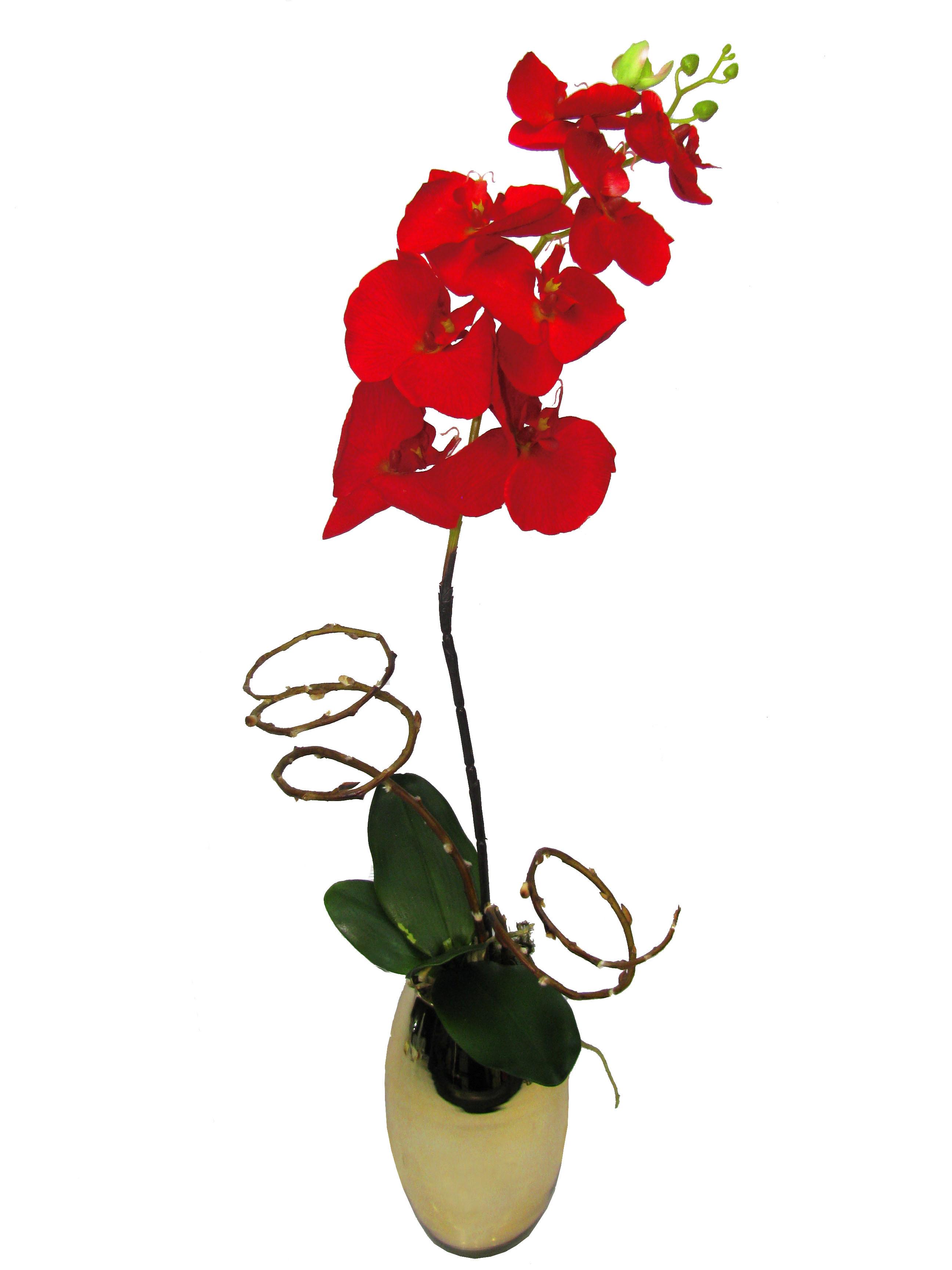 Orquídea Phalaenopsis  vermelha artificial