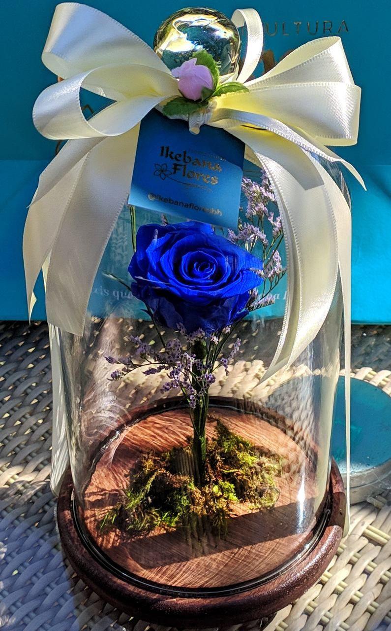 Rosa eterna azul da Cúpula