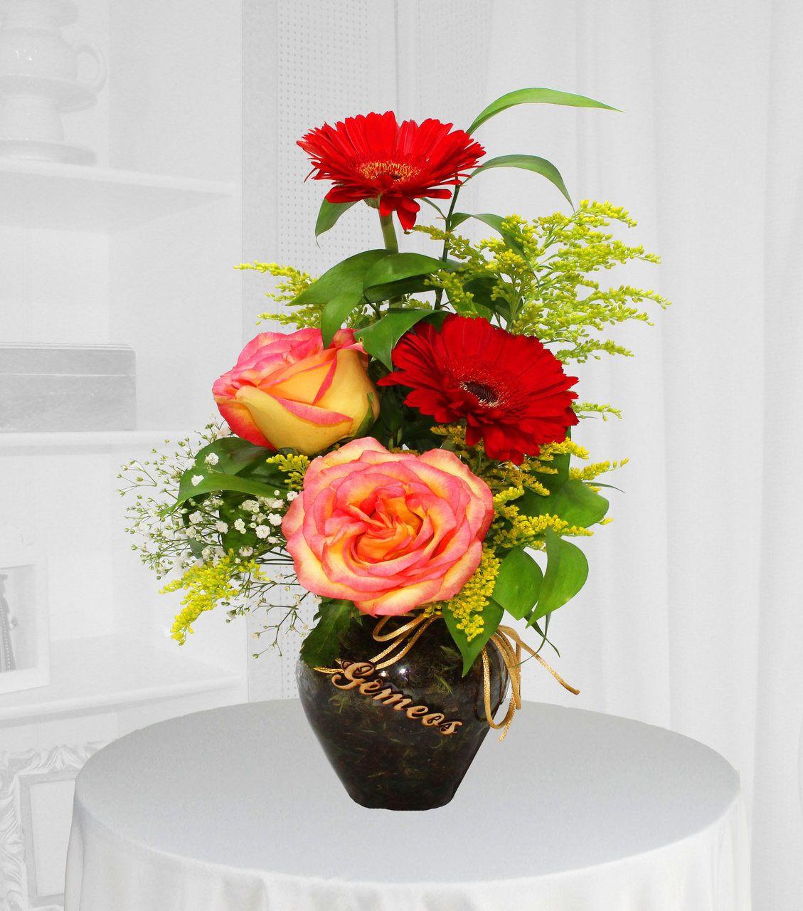 Flores para Geminianos