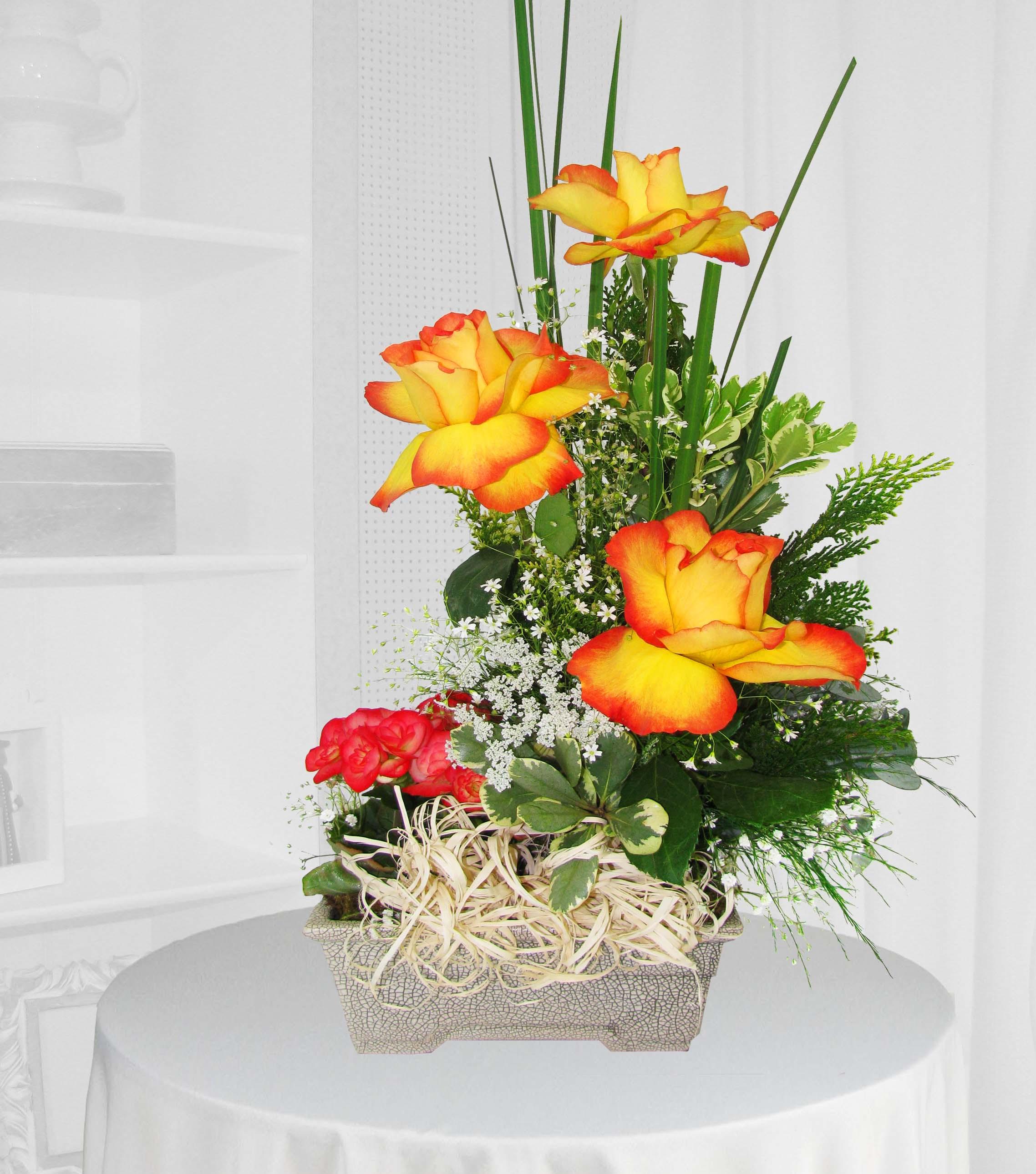 Ikebana Rosas Colombianas Bicolor