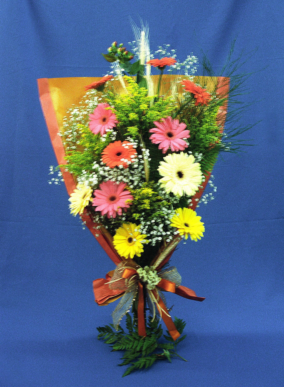 Bouquet Deitado de Gérberas - Visão Panorâmica