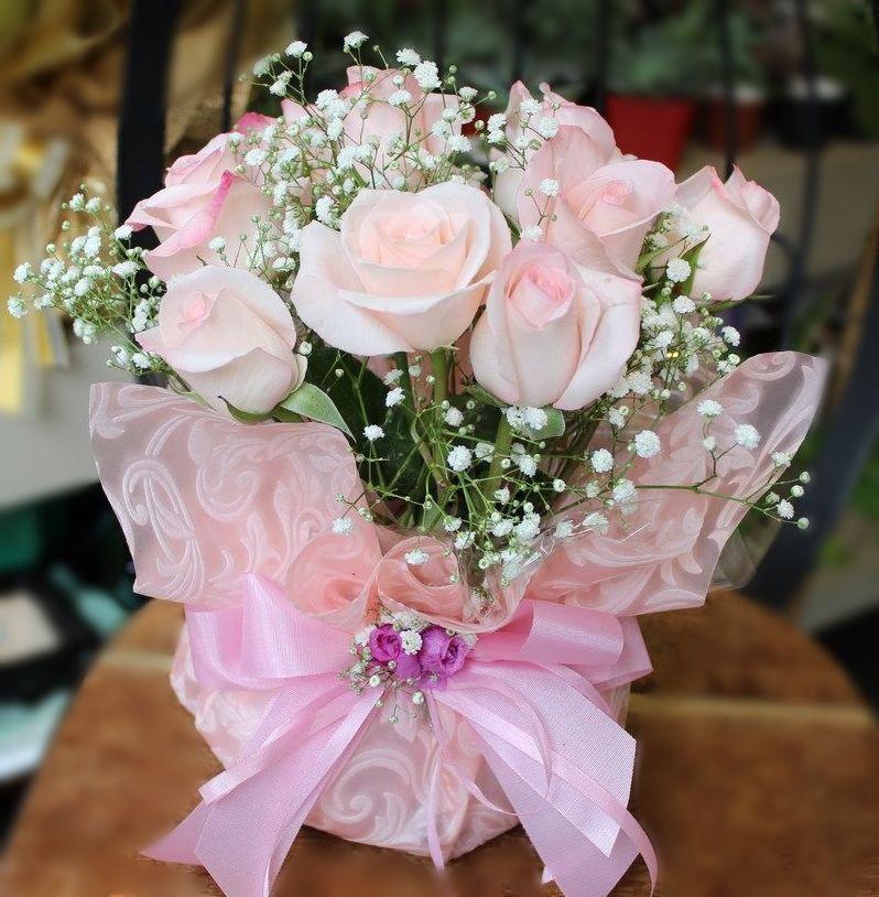 Rosas Vânia